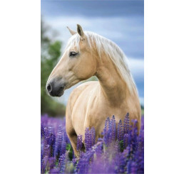Detský uterák Kôň v levanduli Bavlna Froté, 50x30 cm