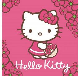Magický uterák Hello Kitty 30x30