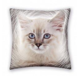 Vankúšik Mačka Polyester, 40x40 cm