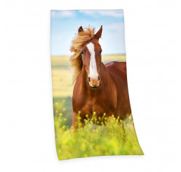 Osuška Kôň 75x150