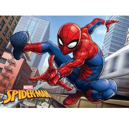 Kúpeľňová predložka Spiderman 40x60