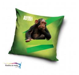 Obliečka na Vankúšik Animal Planet Šimpanz micro 40x40