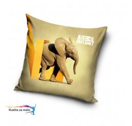 Obliečka na Vankúšik Animal Planet Slon micro 40x40