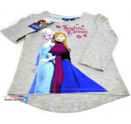 Detské tričko Frozen sivé